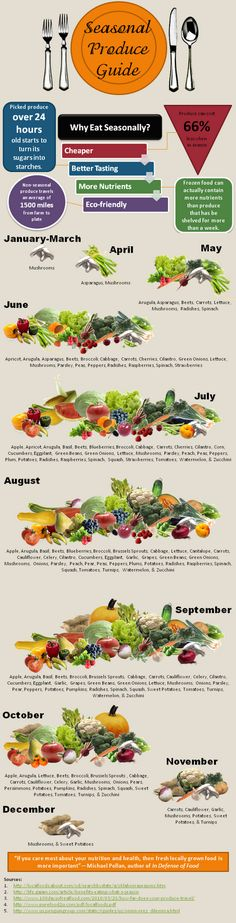 Seasonal Produce Infograph