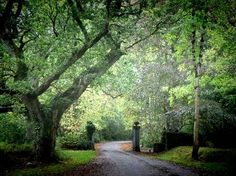 Charleville Castle grounds, Tullamore, Ireland.