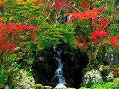 водопад в японском саду