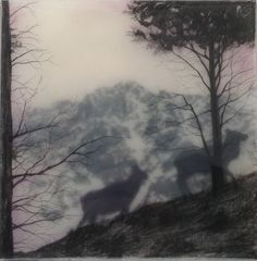 Portfolio - Brooks Shane Salzwedel Love this guy's work! Brooks Shane Salzwedel