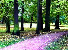Tidlig høst, Slottsparken 2012