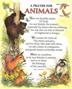 A Prayer For Animals -- attributed (possibly erroneously) to Albert Schweitzer