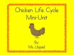 Chicken life cycle unit - lesson plans, printable guided reading books, a craft, etc.  Great way to celebrate Easter in your classroom without focusing on religion!