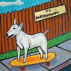Bull terrier skateboarding