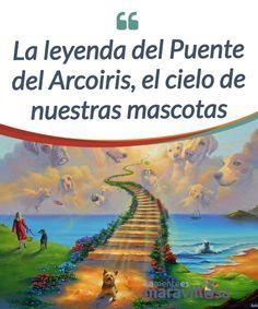 La leyenda del Puente del Arcoiris, el cielo de nuestras mascotas Cuenta la #leyenda que cuando cualquier criatura que hemos #amado se despide de nosotros atraviesa el Puente del #Arcoiris... #Curiosidades