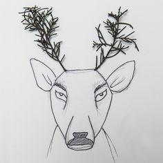dallı budaklı geyik..