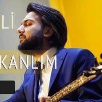 Baskentli Ibocan Vay Delikanlim Indir Sarkilar Muzik Album