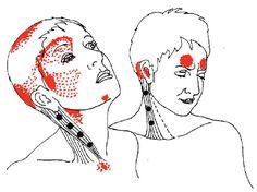 revitive circulation booster instruction manual
