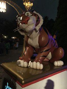 3.虎tiger-2