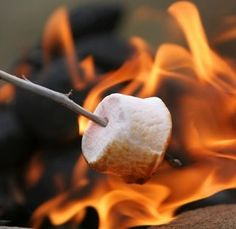 toasting the perfect marshmallow