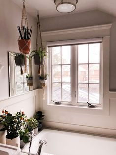 How to keep your houseplants alive while you're on vacation. Our tried and tested methos for everything from tropical plants to succulents! Water Plants Indoor, Potted Plants, Best Bathroom Designs, Low Maintenance Plants, Bathroom Plants, Cozy Corner, Plant Care, Amazing Bathrooms, Decoration