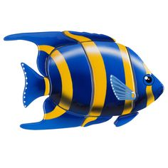 Angelfish, Blue