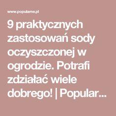 9 praktycznych zastosowań sody oczyszczonej w ogrodzie. Potrafi zdziałać wiele dobrego! | Popularne.pl