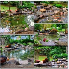 Backyard pond - Mike Gannon - New Jersey. If this doesn't make you want a pond nothing will.
