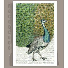 PEACOCK Portrait1- ARTWORK printed on Repurposed Vintage Dictionary page -Upcycled Book Print