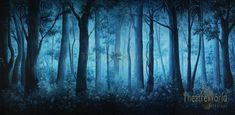 Foggy Forest Daybreak Backdrop by TheatreWorld provides the perfect setting for all film or live productions. Jungle Scene, Foggy Forest, Beautiful Morning, Fairy Tales, Backdrops, Artwork, Painting, Opening Night, Theater