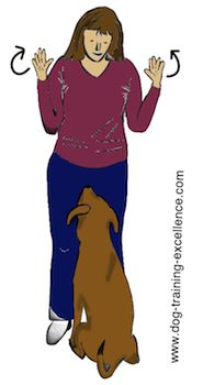 """Dog Obedience Training: Free : both hands at shoulder level, palms-out (as in """"all done""""). This signalbl… – Sam ma Dog Training Deaf Dog Training, Dog Training Equipment, Dog Training Videos, Training Your Puppy, Leash Training, Training Tips, Socializing Dogs, Yorky, Cute Dog Photos"""