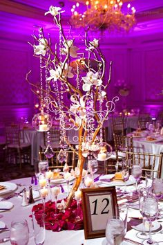 Suhaag Garden, Florida Indian Wedding Decorators, California Indian Wedding Decorators, Manzanita Branches, Ritz Carlton Palm Beach, Drooping Crystals, White & Red Centerpiece, Pakistani Wedding