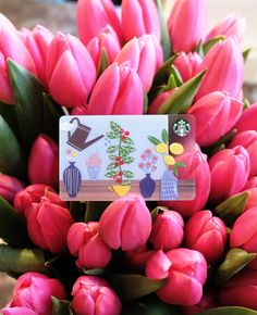 Celebrating fresh blooms with the Spring 2015 Starbucks Card.
