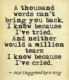 A thousand words can't bring you back, I know because I've tried. And neither would a million tears I know because I've cried.