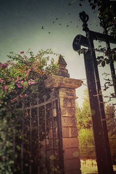 Flowery Iron Gate