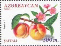 Sello: Persica (Azerbaiyán) (Fruits) Mi:AZ 480,Yt:AZ 412