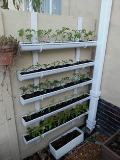 I built a vertical planter yesterday afternoon. - Imgur