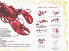 lobster party supplies - Bing Images