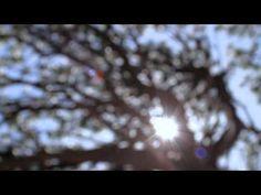 Soulsavers - 'Take Me Back Home' - YouTube