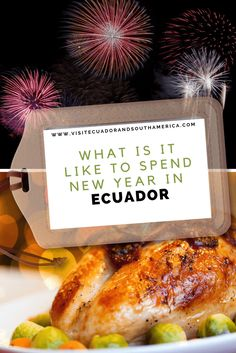 What is it like to spend New Year in Ecuador? Learn about this tradition and how we celebrate it in Ecuador! Travel Ideas, Travel Tips, Just Dream, Amazon Rainforest, Galapagos Islands, Highlands, Ecuador, South America, Coastal