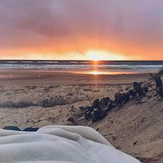 Imagine waking up to this view! You can when staying at Noosa North Shore, a dreamy stretch of beach accessed by 4WD. It is the perfect spot for camping, fishing and surfing.