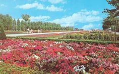 Flower Garden at Centre Island, Toronto.