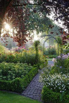 Fresh Garden with Sun Raising #spring #garden #sunshine #gardening #flowers #courtyard #garden #arch