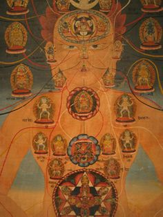 In tantric Buddhism body mandalas are taught in the major Anuttarayoga systems in Indian tantric literature, such as the Chakrasamvara, Guhyasamaja, and Hevajra Tantras.