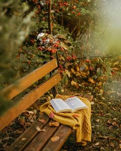 Raindrops and Roses: Photo Autumn Photography, Book Photography, Apples Photography, Raindrops And Roses, Autumn Cozy, Autumn Fall, Autumn Scenery, Autumn Aesthetic, Fall Photos