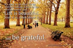 Grateful-Quotes-Its-easy-to-let-days-fly-by-without-taking-notice-to-the-world-around-you.-Life-is-beautiful.-Soak-it-in-think-about-it-and-be-grateful.