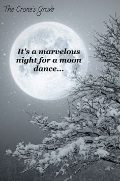 It's a marvelous night for a moon dance. Sun Moon Stars, Sun And Stars, Wicca, Magick, Moon Dance, Moon Shadow, Moon Pictures, Good Night Moon, Moon Magic