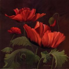 Vibrant Red Poppies II