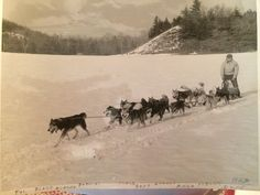 My Grampa with his sled dogs 1953 he even wrote the doggos names on the bottom