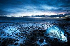 jokulsarlon glacier lagoon, iceberg beach sunset in Iceland Iceland Landscape, Photography Workshops, Day For Night, Milky Way, Night Skies, Sunset, Beach, Sunsets, Seaside