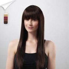 Capless Long Straight High Quality Synthetic Wig 15 Colors To Choose *free ship