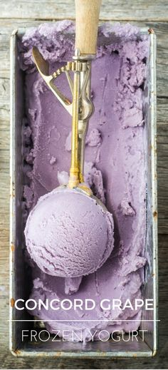 Healthy Concord Grape Frozen Yogurt is made with just three ingredients! | theviewfromgreatisland.com