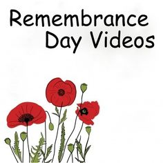 That Fun Reading Teacher's top three story choices for Remembrance Day, and a video link to Linus reciting 'In Flanders Fields'. Remembrance Day Activities, Remembrance Day Art, First Grade Lessons, Flanders Field, Anzac Day, Kindergarten Lessons, Social Emotional Learning, Early Literacy, Veterans Day