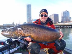 Monster Brown caught and released in the Milwaukee Harbour. New world record for total length at 38.19 inches.