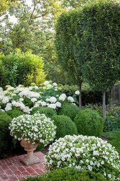 Good white composition for the garden Tone on Tone: Our Garden in Southern Living