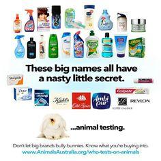 Brands that test on animals