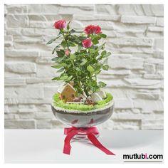 özel tasarım gül aranjmanı http://www.mutlubi.com/istanbul-online-cicek/kirmizi-guel-ciftlik-evi.html  #mutlubi #mutlubicom #istanbul #ataşehir #gül #çiçek #özeltasarım #hediye