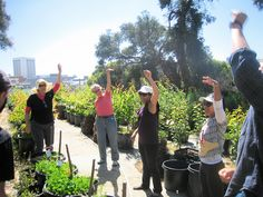 Best of Hayes Valley Farm