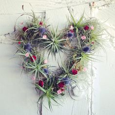 Proclaim your love with air plants. #etsyfinds #etsyweddings #etsyvalentines