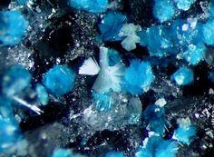 Puscharovskite, Cu(HAsO4) · 2H2O, et mahnertite, NaCu3(AsO4)2Cl · 5H2O,  Cap Garonne Mine, Le Pradet, Var, Provence-Alpes-Côte d'Azur, France